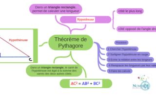 Théorème de Pythagore 4ème Leçon Carte mentale