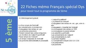 fiche memo 5eme français leçons et exercices spécial dys